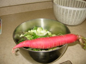 Now, That's a Radish